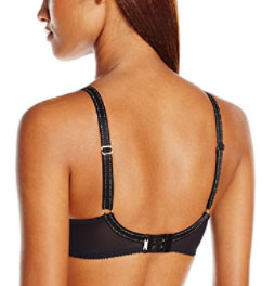 Chantelle Rive Gauche best bras for d cup and up (back)