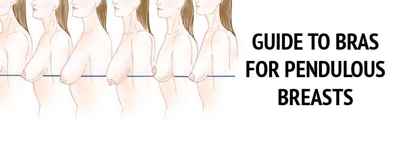 guide bras pendulous breasts